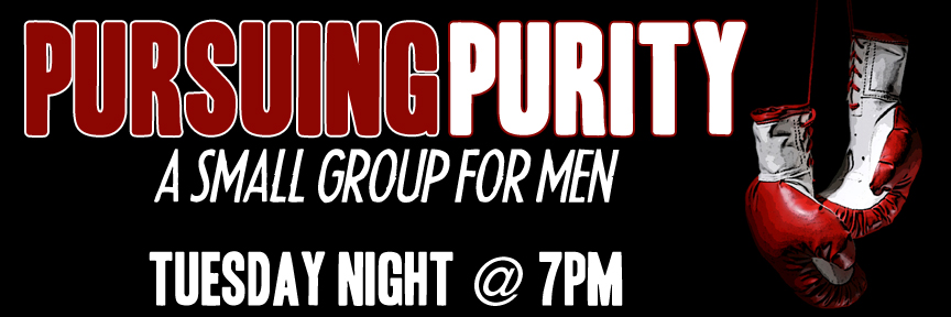 Pursuing Purity Mens' Group